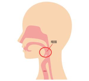 クラミジア咽頭・淋病咽頭