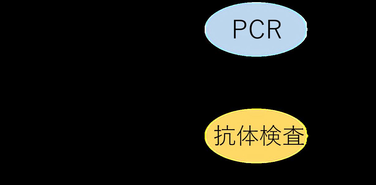 日後 結果 何 Pcr 検査
